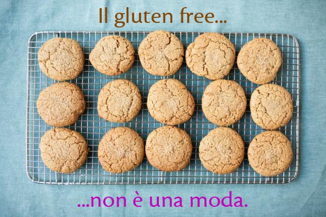 gluten free no moda