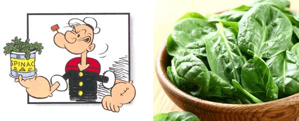 spinaci-primavera-braccio-di-ferro