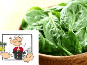 spinaci-primavera-evidenza