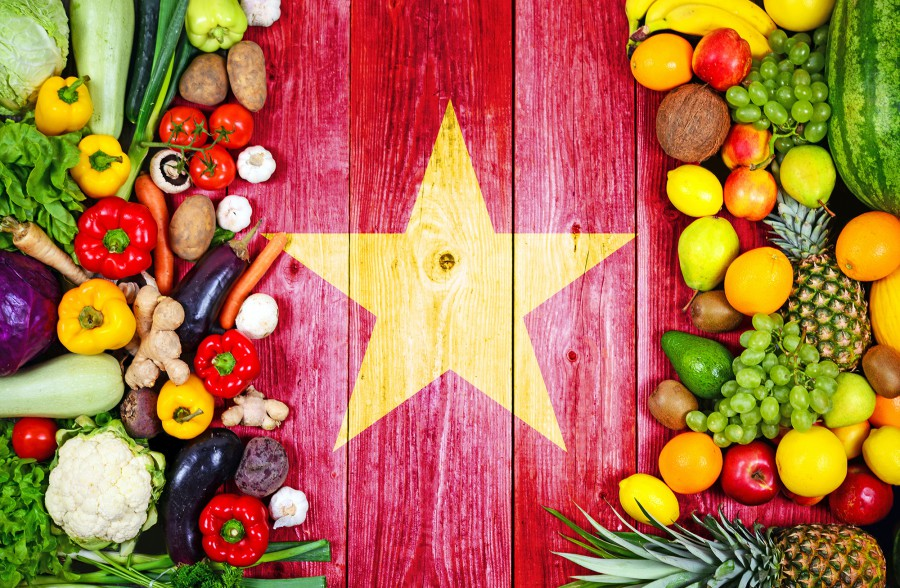 cucina vietnamita bauer